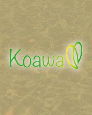 camping Koawa parc aquatique